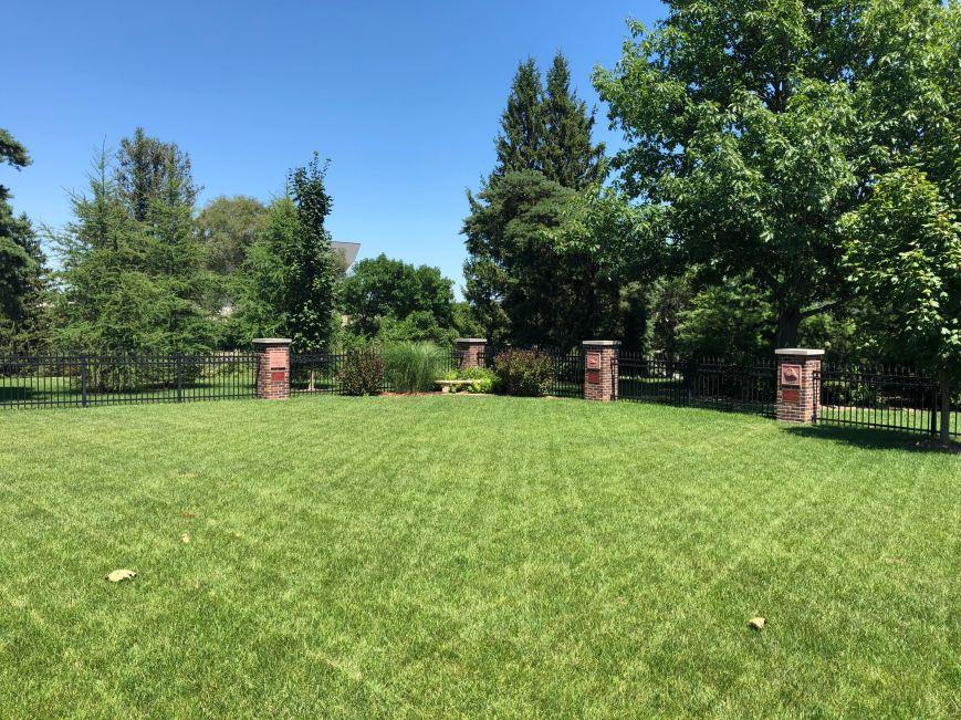 empty garden1